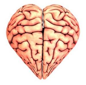 cerebro-amor