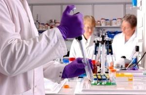 investigacion-cientifica-posible-invierten-beneficios_1_700939