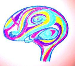 Cerebro ret 15