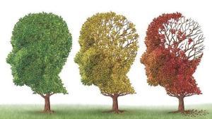 5-mitos-sobre-el-Alzheimer-y-el-deterioro-cognitivo--parte-II--shaune-Fraser-campeon-panamericano-natacion