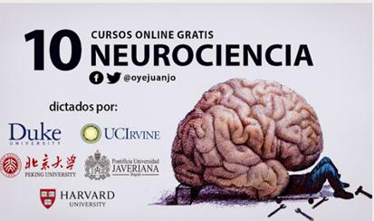 Neurociencia cursos online