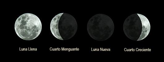 Neurociencia: influencia de las fases de la luna en las emociones ...