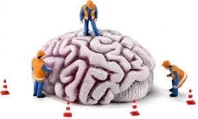 Resultado de imagen de rehabilitación neurológica